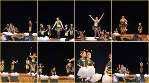 telethon 2009 danse maya 1